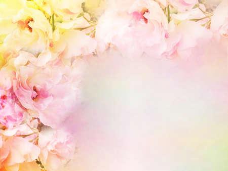 美しいバラの花ボーダー ビンテージ カラー フィルター、バラ花バレンタイン、結婚式カードの背景