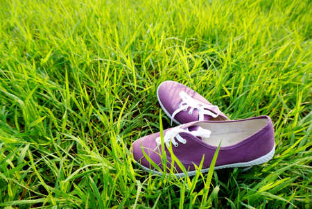 purple shoes: purple shoes on nature green grass, travel concept and idea background