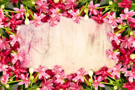 pink flower border and frame in vintage color for valentine background and wedding card