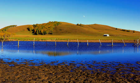 and the stakes: lake and blue sky scenic