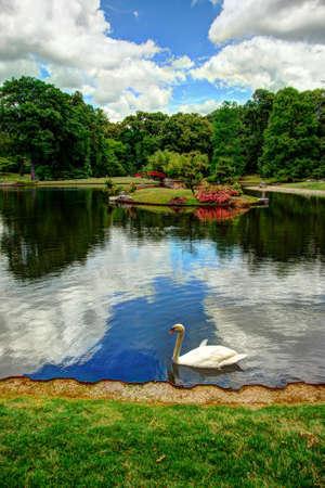 Peaceful Japanese garden