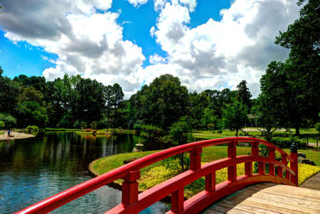 japenese: Primavera en Memphis