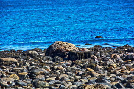 seascapes: the rocky coast of new hampshire,