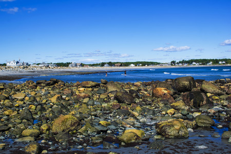 seascapes: a view of the rocky shore of new hampshire
