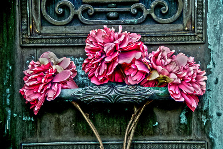 wilted: three wilted carnations on a door