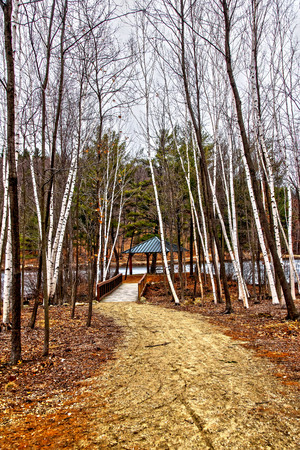 A path leading to an pavilion in a state park