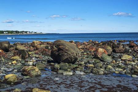 rocky shore at low tide in maine.