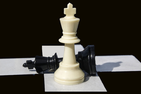 two chess pieces on a board game.