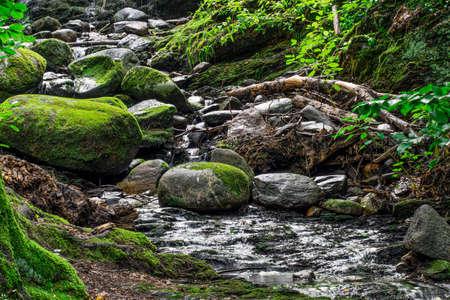 a rocky brook winding through barrett park in leominster massachusetts
