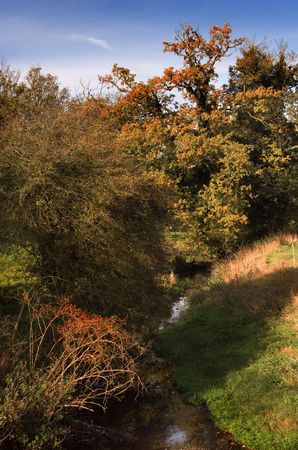 Ancient English stream in the fall, with rose hips inthe foeground, viewed from a village bridge.  Beautiful and serene. Stock Photo - 369140