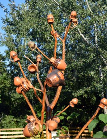 arbres fruitier: Cruches sur un arbre ornemental � Bucarest, en Roumanie, pour attirer et pi�ger les insectes de entourant les arbres fruitiers