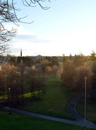accord: Late afternoon winter sun illuminates the trees in Bon Accord Gardens, Aberdeen, Scotland Stock Photo