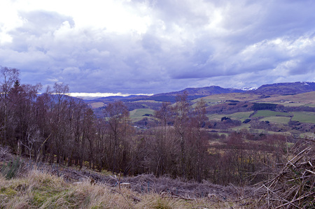 turret: Springtime view across birch trees to the Loch Turret hills from the Knock of Criieff, Perthshire