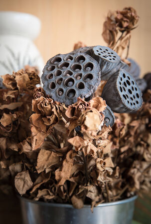 lotus seed: dried lotus seed pod and dried roses (Vintage Style) Stock Photo