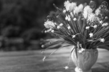 blackwhite: Decoration artificial flower, Fake flowe r- black&white