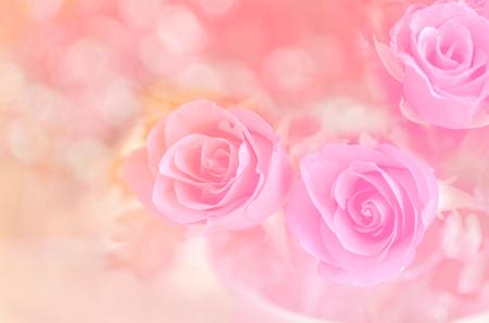 rosas de color rosa en el fondo bokeh, Roses en el fondo de color rosa Foto de archivo