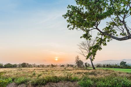 reveille: Beautiful landscape of the sunset Stock Photo