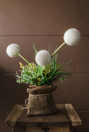stillife: Stillife with dandelions, Still life composition with dandelions Stock Photo