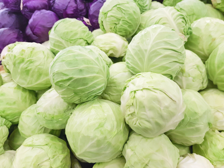 fresh cabbage for sale in the market Banco de Imagens