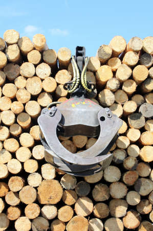 gripper: Collection firewood for the fireplace with gripper
