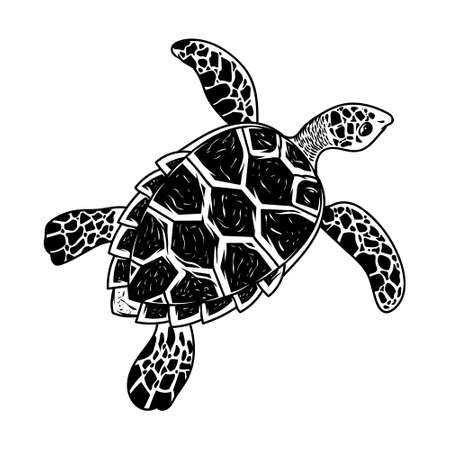 Big sea ocean wild animal turtle slow swim monochrome drawing graphic style cartoon character vector illustration retro vintage style. With beauty panzer pattern on back poster print design.