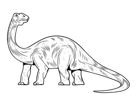 Brontosaurus the highest dino dinosaur. Cartoon character illustration drawing engraving ink line art vector. Isolated white background for print design t shirt clothes sticker poster badge. Stock Illustratie