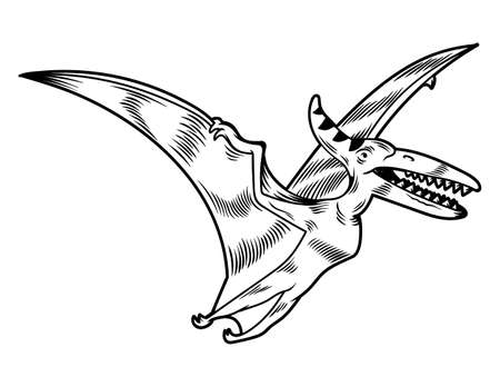 Pterodactyl dangerous predator dino flying dinosaur. Cartoon character illustration drawing engraving ink line art vector. Isolated white background for print design t shirt clothes sticker poster. Stock Illustratie