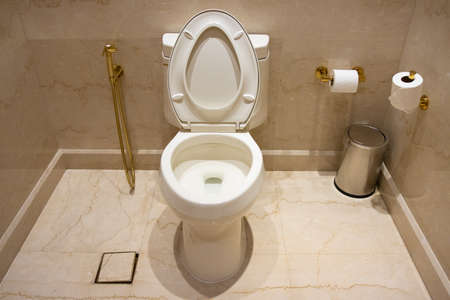 White toilet in the bathroom of an expensive house 版權商用圖片