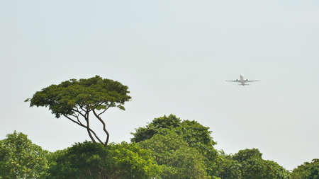 Take-off aircraft on the background of the jungle and trees in Indonesia.