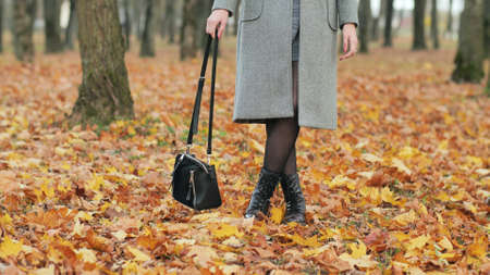 The girl is waving her purse and stands on the autumn foliage. 写真素材