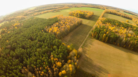 Aerial photography of the autumn forest and fields in Russia.
