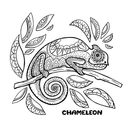 Chameleon coloring book vector illustration. Anti-stress coloring pages. Black and white lines.  イラスト・ベクター素材