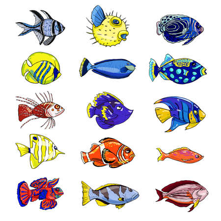 Colorful set of exotic fish on a white background. Hand drawn. Vector illustration.