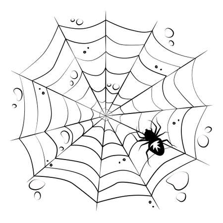 Web with a spider on a white isolated background. Halloween Design Elements. Creepy, scary. Vector.