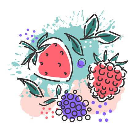 Berries: raspberries, blackberries, strawberries on an abstract background. Packaging design. Vector hand illustration.