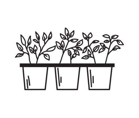 Pots with seedlings on a white background in the outline style. Vector illustration.