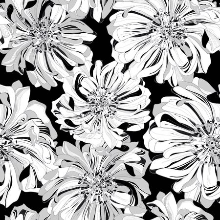 is magnificent: Seamless vector pattern of botanical flowers. Dramatic black background in contrast trim buds magnificent chrysanthemum flowers in the shade with a high degree of detail. Stock Photo