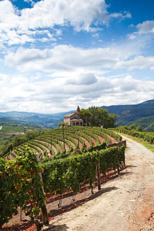 terracing: The Church of San Bovo - Cossano Belbo  Piedmont, Italy   landscape of Langhe   Stock Photo