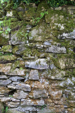 musk: Old stone wall with musk Stock Photo