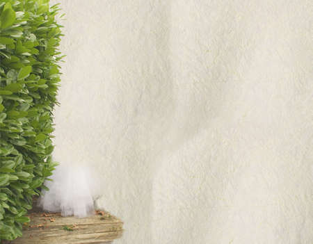 vanished: High resolution of handmade paper, on the left a hedge and a  vanished white long dress. Stock Photo
