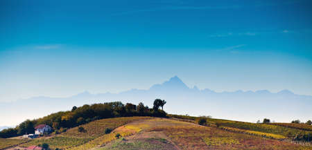 Astigiano, Piedmont, Italy: landscape (Monviso on background) photo