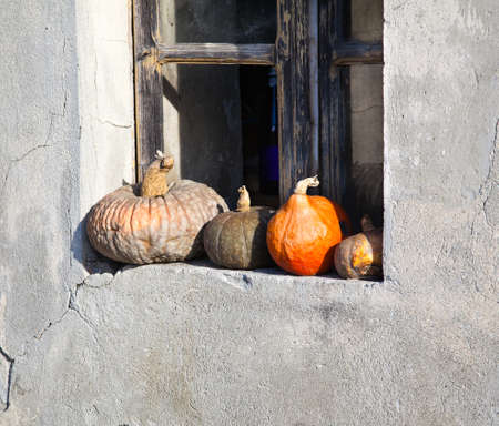 countrylife: Harvested pumpkins and pomegranates.