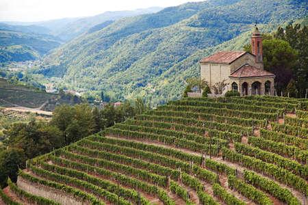 Cossano Belbo (Piemonte, Italië): landschap van de Langhe. Aan de rechterkant van de kerk van San Bovo. Stockfoto