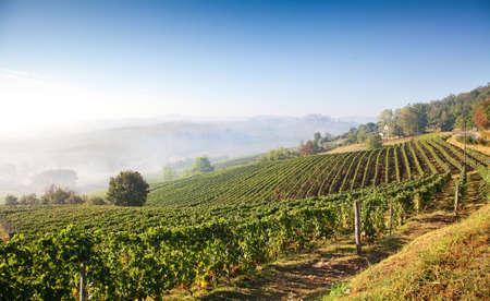 Astigiano, Piemonte, Italië: landschap