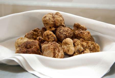 alba: Group of Italian white truffles Stock Photo