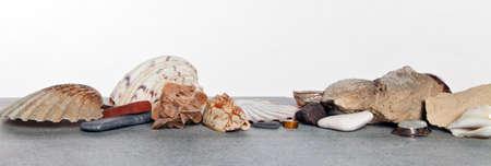 lybia: Shells, stones, desert rose on wooden background