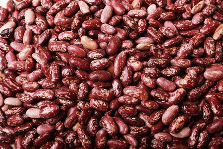 haricot: Haricot beans on canvas