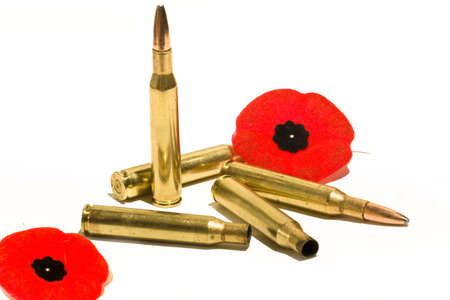 casings: Bullets, casings, and poppies