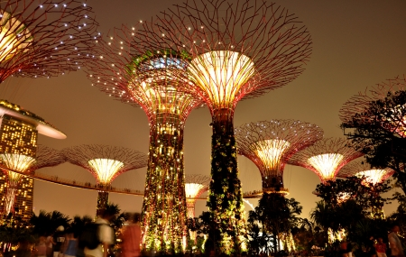 marina bay: Wonderful scene, Gardens by the bay in Singapore. Editorial