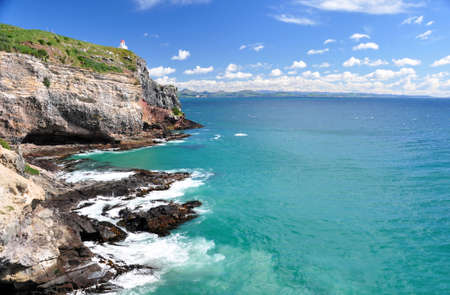 Taiaroa Head, Otago peninsular, New Zealand  photo